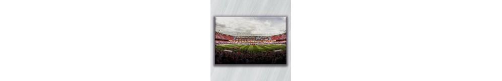 Lienzo del Atlético de Madrid. Envío con bastidor incorporado